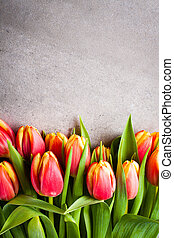 copie, bouquet, space., tulipe, fond, fleurs