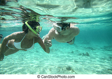 coppia, caraibico, acque, snorkeling