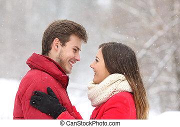 coppia, dall'aspetto, altro, in, inverno