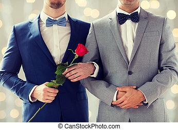coppia gaia, su, tenere mani, chiudere, maschio, felice