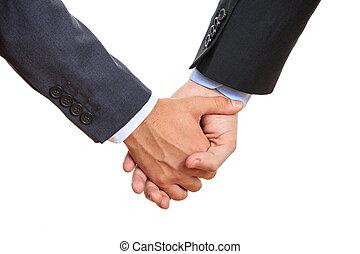 coppia, gaio, tenere mani