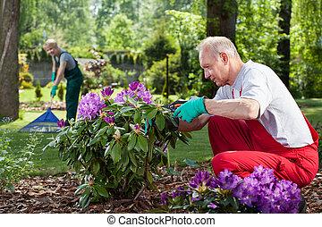 coppia, lavoro, giardino, maturo