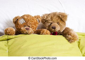 coppia, orso, letto