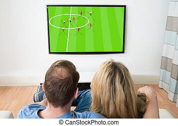 coppia, osservare televisione