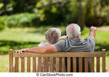 coppia, panca, loro, macchina fotografica indietro, seduta