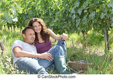 coppia, rilassante, in, vigneto