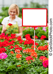 Copy space for your advertisement. Close-up of copy space on the commercial sign with woman working with flowers on the background