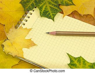 copybook, mapa, lápiz de color