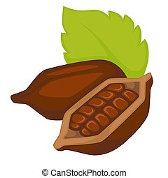 coquille, objet, isolé, chocolat, cacao, production, haricots