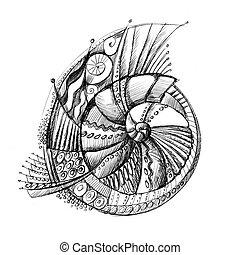 coquille, résumé, spirale, dessin, inhabituel, crayon