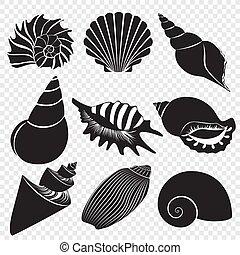 coquilles, isolé, arrière-plan., silhouettes, vecteur, mer noire, alpha, transperant