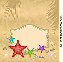 coquilles, vendange, salutation, endroit, t, starfishes, carte