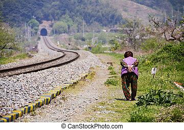 coréia, trem, transporte, sul