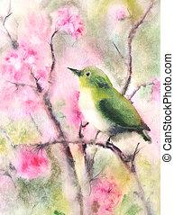 cor água, desenho, de, um, pequeno, pássaro verde