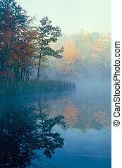 cor, árvores, refletir, através, outono, lagoa, névoa, smal