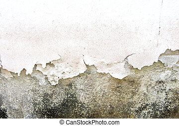 cor, causado, rachado, umidade
