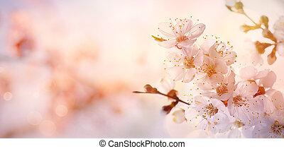 cor-de-rosa, arte, flor, primavera, árvore, fundo, florescer, borda, ou