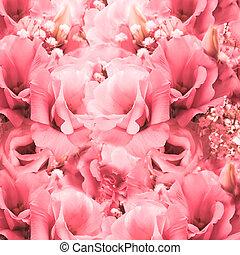 cor-de-rosa, buquet, floral, rosas, backg