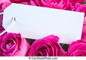 cor-de-rosa, buquet, vazio, rosas
