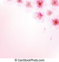 cor-de-rosa, cereja, bokeh, flor, borda