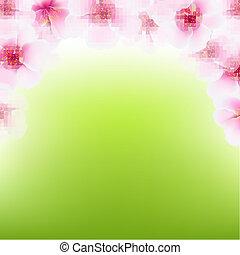 cor-de-rosa, cereja, quadro, flor