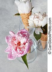cor-de-rosa, cinzento, pedra, flor, folha, peony, flor, gotas, água, experiência., verde