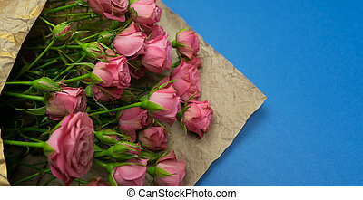 cor-de-rosa, close-up, rosas