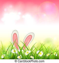 cor-de-rosa, coelho páscoa, fundo, natureza
