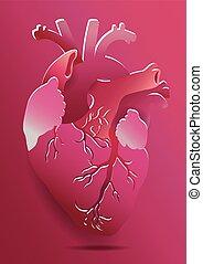 cor-de-rosa, coração, experiência., isolado, ilustração, eps, realístico, vetorial, 10