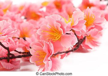 cor-de-rosa, fim, flowers., cima