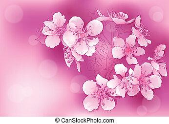 cor-de-rosa, flores