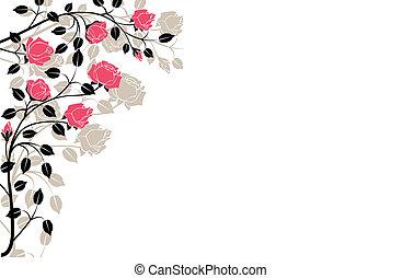 cor-de-rosa, flourishes, pretas