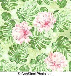 cor-de-rosa, folhas, flor, monstera