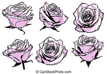 cor-de-rosa, halftone, rosas, jogo, pretas, pontos