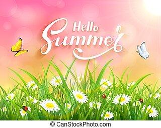 cor-de-rosa, lettering, verão, natureza, fundo, olá