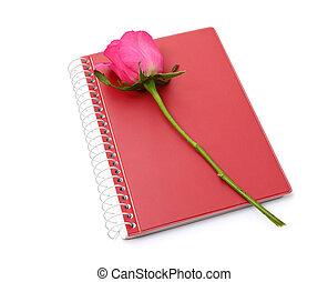 cor-de-rosa levantou-se, caderno, fundo, branco vermelho