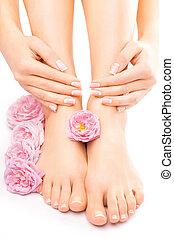 cor-de-rosa levantou-se, flor, manicure, pedicure