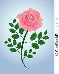 cor-de-rosa levantou-se, folhas, vetorial, ilustrado