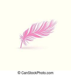 cor-de-rosa, macio, liso, isolado, textura, experiência., pena, branca