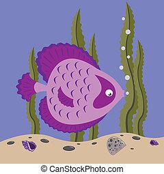 cor-de-rosa, peixe