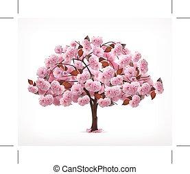 cor-de-rosa, primavera, árvore