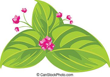 cor-de-rosa, primavera, flowers., buquet