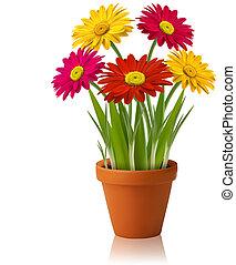 cor, flores frescas, vetorial, primavera
