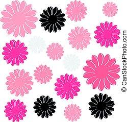 cor, flores, isolado, branco, fundo
