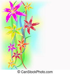 cor, orquídeas, ondulado, fundo, multi-colorido