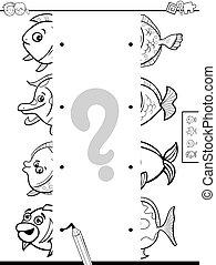cor, quadros, peixe, metades, jogo, livro, partida