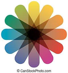 cor, roda, com, doze, cores