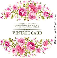cor, rosa, card., luxuoso