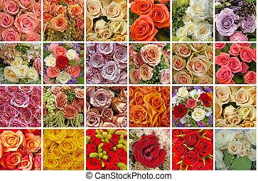 cor, rosas, cartão