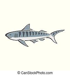 cor tubarão, abstratos, simplificado, mar, tinta, logotipo, oceânicos, desenho, sketch., cartoon., doodle, personagem, pintura, animal, desenhado, print., blue., sinal., mão, tiger, tecido, papel parede, illustration., curva, elemento, vetorial